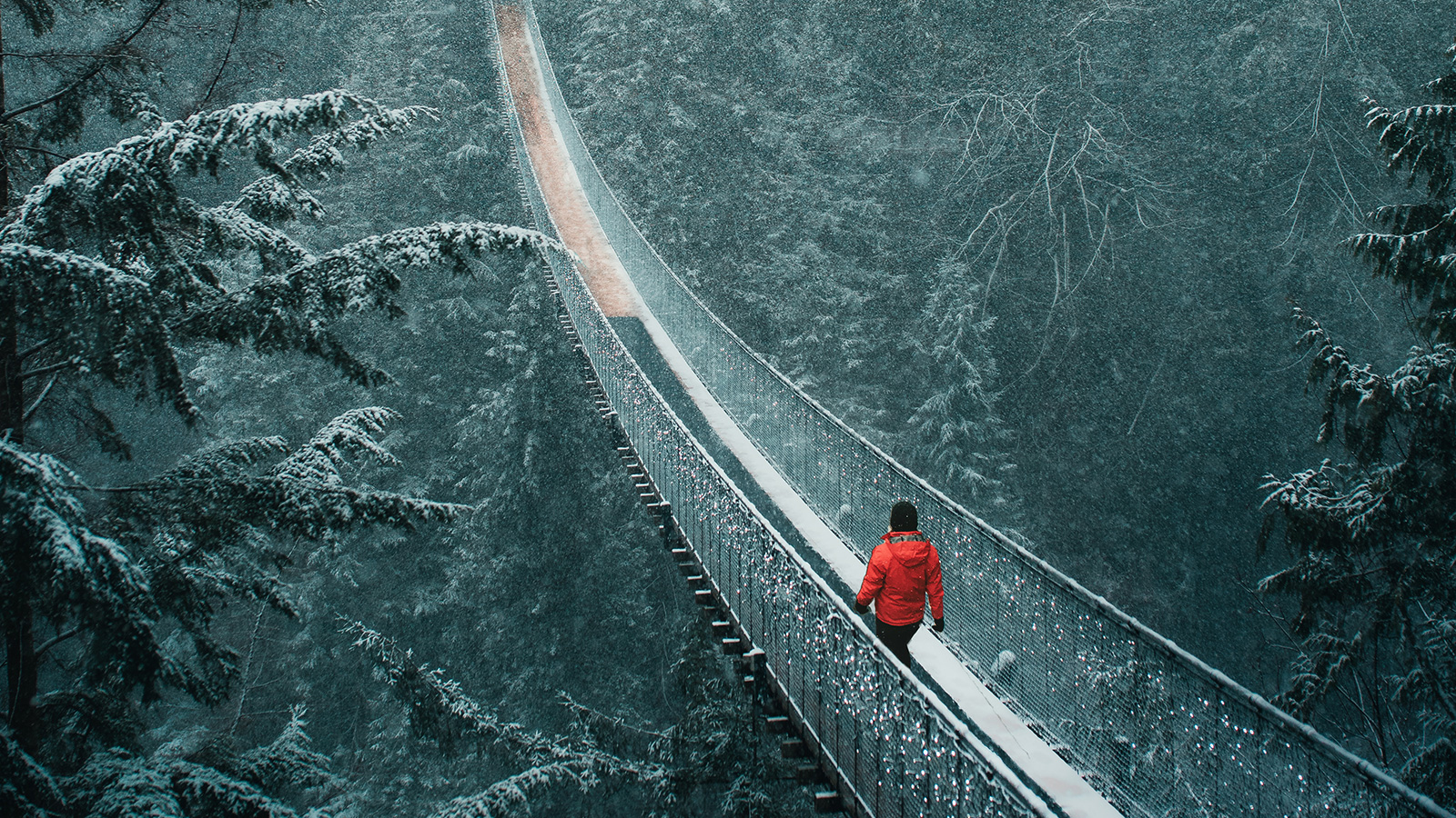Man on suspension bridge