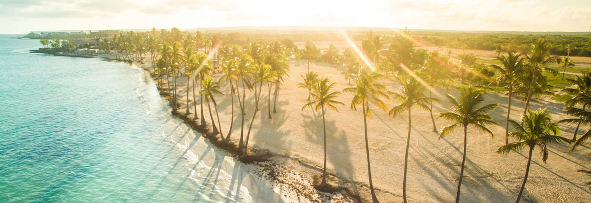Dominican beach with palm trees