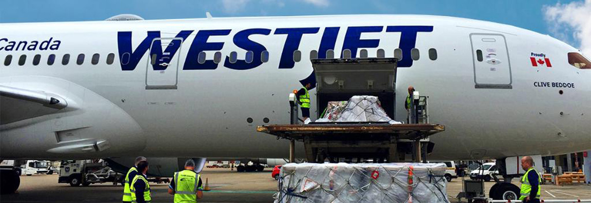 Loading cargo onto aircraft