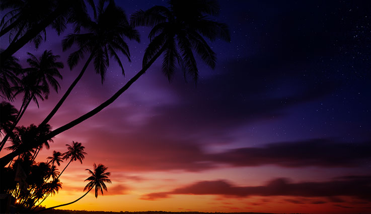A dark sky sunset hangs over a tropical beach