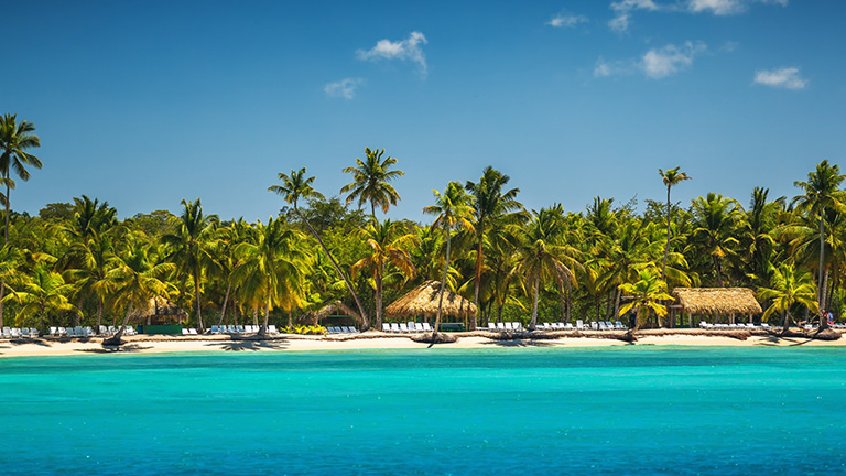 Caribbean beach vacation with palm trees
