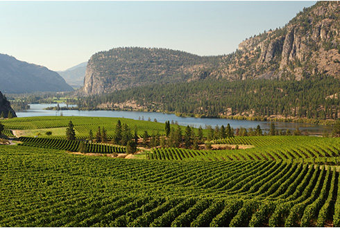 Showing slide 6 of 10 in image gallery, Penticton, BC