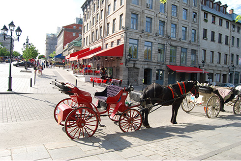 Showing slide 6 of 22 in image gallery, montreal-quebec_horse-carriage