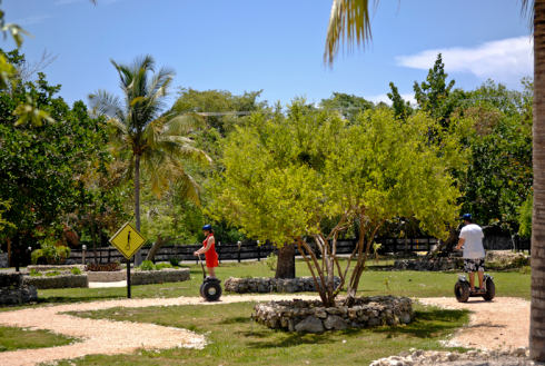 Showing slide 3 of 15 in image gallery, Punta Cana