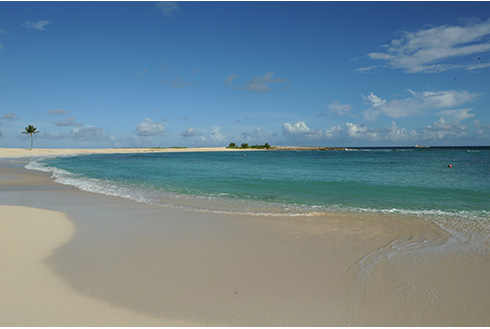 Showing slide 14 of 25 in image gallery, Shoreline of Cove Beach in Nassau