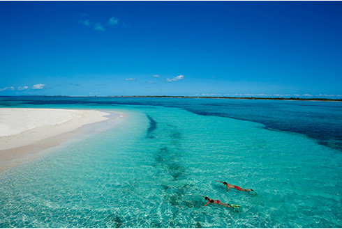 Showing slide 4 of 25 in image gallery, Two people snorkelling in clear blue water