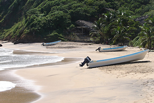 Showing slide 3 of 8 in image gallery, Huatulco beach with motorboat and lush vegetation