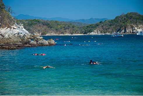 Showing slide 5 of 8 in image gallery, Guided snorkeling tour at the beach in Huatulco, Oaxaca, Mexico