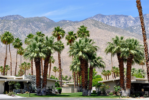 palm springs california united states hawaii westjet