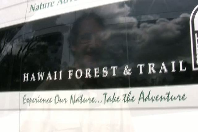 Showing slide 2 of 23 in image gallery, Hawaii Volcanoes National Park, Hawaii Forest & Trail video by WestJet Vacations