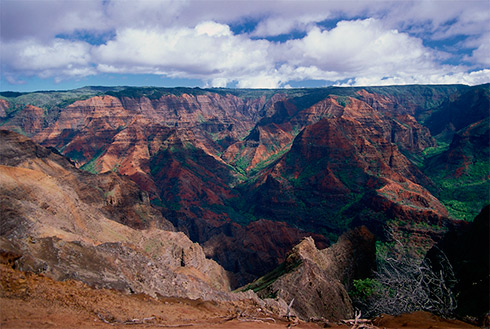Showing slide 40 of 41 in image gallery, Waimea Canyon State Park, Kauai