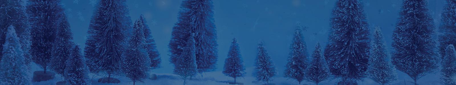 WestJet Christmas Miracle | WestJet