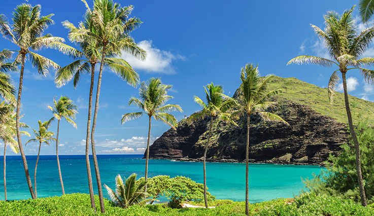Flights from Calgary to Kahului, Maui