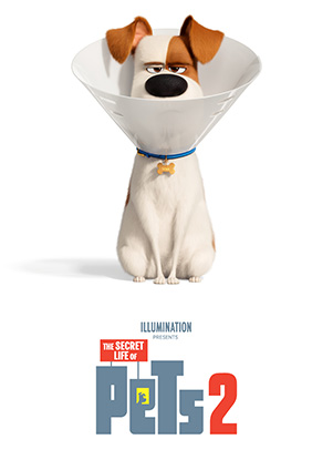 The Secret Life of Pets 2*