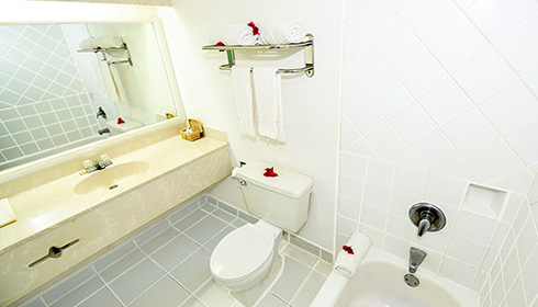Showing slide 1 of 3 in image gallery, King Superior bathroom