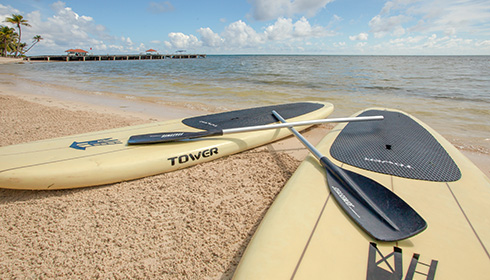 Showing slide 13 of 14 in image gallery, Stand up paddle boards