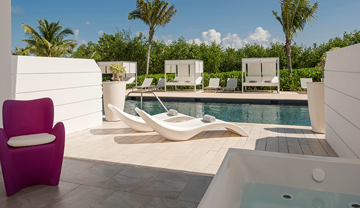 Image showcasing Honeymoon Suite Swim Out