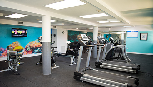 Image 9 de 9, de la gallerie de photos : Gym