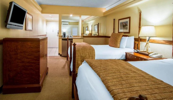Showing slide 2 of 2 in image gallery, Classic Room - 2 double beds