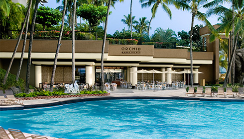 Showing slide 12 of 18 in image gallery for Hilton Waikoloa Village