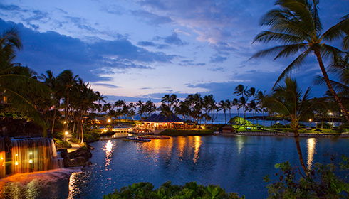 Showing slide 18 of 18 in image gallery for Hilton Waikoloa Village
