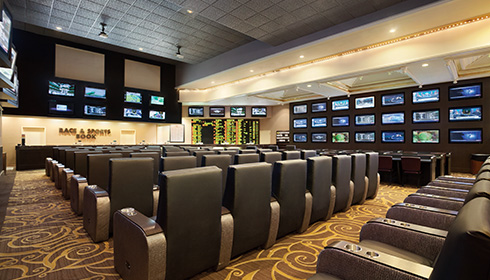Bar Race and Sports Book