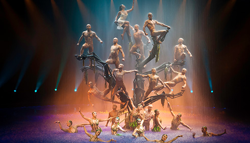 Showing slide 9 of 13 in image gallery, Le Reve Show