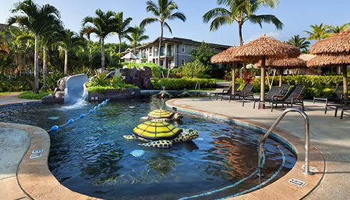 Showing slide 3 of 20 in image gallery for Westin Princeville Ocean Resort Villas