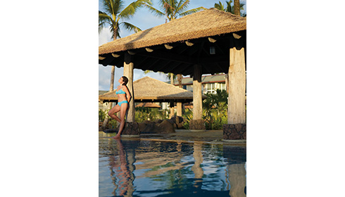 Showing slide 8 of 20 in image gallery for Westin Princeville Ocean Resort Villas