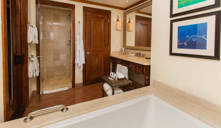 Showing slide 2 of 2 in image gallery, Deluxe Room - Bathroom