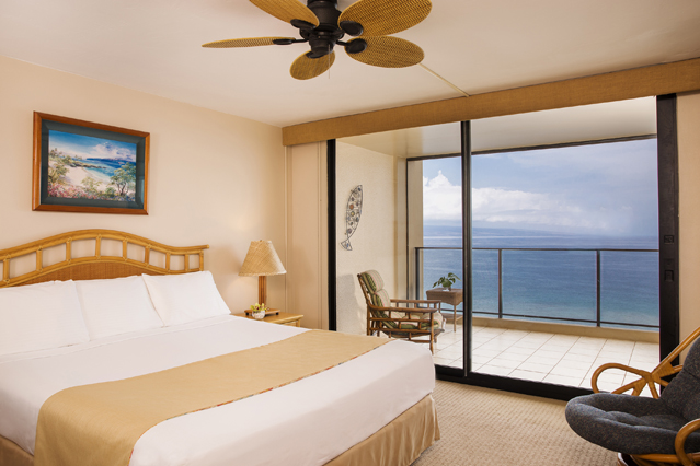 Showing slide 2 of 3 in image gallery showcasing 1 Bedroom 1 Bathroom Oceanfront