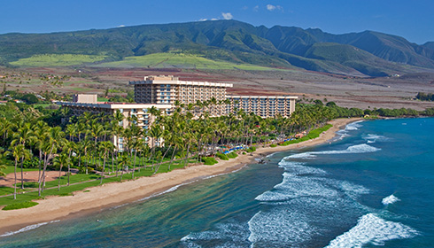 Showing slide 5 of 8 in image gallery for Hyatt Regency Maui Resort & Spa