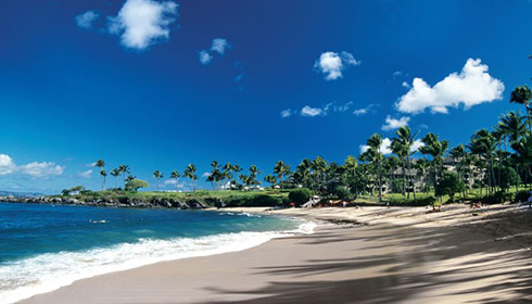 Showing slide 18 of 28 in image gallery for The Kapalua Villas Maui Condo