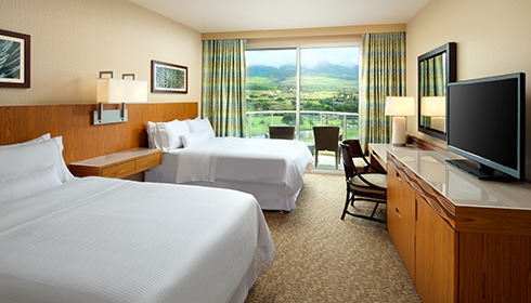 Showing slide 2 of 2 in image gallery, Mountain View Room with double beds