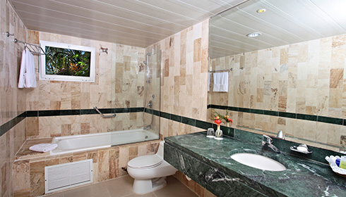 Showing slide 2 of 2 in image gallery, Standard Room bathroom