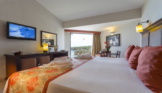 Image showcasing Deluxe Ocean View Room