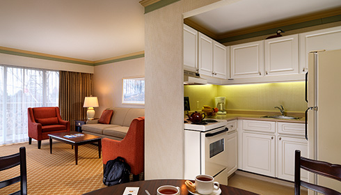Showing slide 2 of 2 in image gallery, One Bedroom Suite - Kitchen