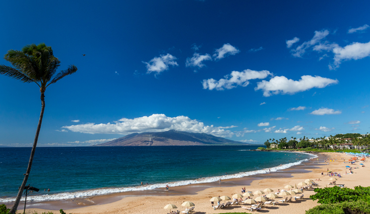View of a Maui beach