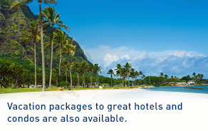 Vacation packages to great hotels and condos are also available.