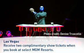 Two show tickets with MGM Resorts.