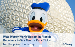 Walt Disney World Resort Theme Park Ticket offer.